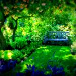 """Garden Bench"" by PerryWebster"