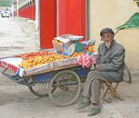 Old Man With Fruit Cart