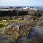 """""""Tasmanian rock pool"""" by kabe"""