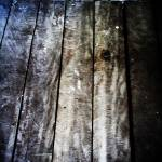 """timber floor"" by wilsonkunjan"