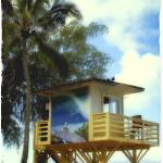 """Lifeguard Stand in Hawaii"" by sandybuckley"