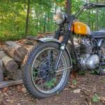 """BSA in the Backyard"" by ReidKasprowicz"