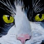 """Tuxedo Cat"" by mozache"