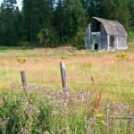 """Old Barn in North Idaho"" by SamSherman"