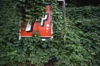 7UP sign in kudzu