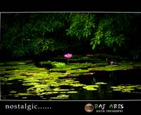 nostalgic- raj arts photography