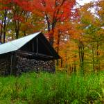 """Sugar Shack and Foliage"" by chrisromano"