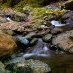 """Adobe Canyon Creek"" by djholmes"
