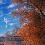 """Autumn in Mildenhall"" by georgefairbairnphotograph"