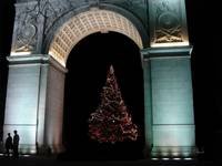 Washington Square Park Christmas Tree in NYC