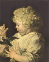 Portrait of a Child with Bird by Anthony van Dyck