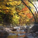"""Swift River - White Mountains, NH Autumn"" by ScenicNH"