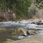 """streams"" by sandradee8"