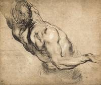 Study of Man's Torso by Peter Paul Rubens