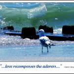 """""""Love Recompenses"""" by ZunildaSarete"""