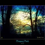 """""""Prospect Park III"""" by ZunildaSarete"""