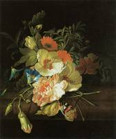 Ruysch Carnation Morning Glory with other flowers