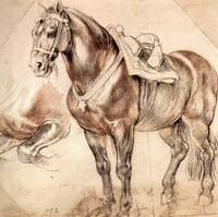 Horse Studies by Peter Paul Rubens