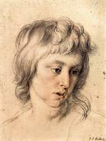 Boy's Portrait by Peter Paul Rubens