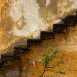"""Tree And Stairs In Cappadocia"" by joshuaphotography"