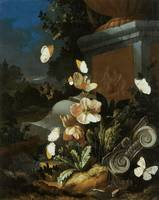 Van Den Brocck Flowers and Butterflies
