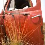 """Grass and Ford Door"" by"