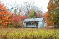 Old House/autum colors