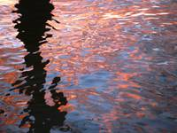 Sunset ripples