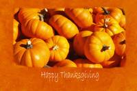 Halloween Pumpkins 6 - Happy Thanksgiving