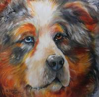 BEAR the CATAHULA CUR PET PORTRAIT
