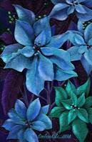 Blue Poinsettias