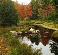 Fall Scene In Lempster New Hampshire