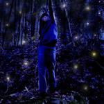"""""""fireflies"""" by pietrastone"""