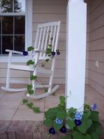 Morning Glory Rocking Chair