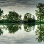 """Green"" by MisturPhotography"