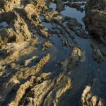 """Tide Pools 1"" by LanceIFitzsimmons"