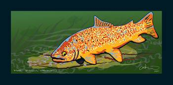Tiger Trout (blue border)