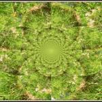 """""""Landscape Kalidescope"""" by bill26003"""