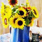 """My Birthday Sunflowers"" by Sonja"