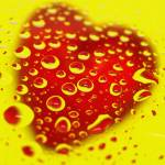 """Bleeding Heart Reflections"" by LauraM"