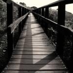 """follow the shadow"" by LetCreativityBegin"