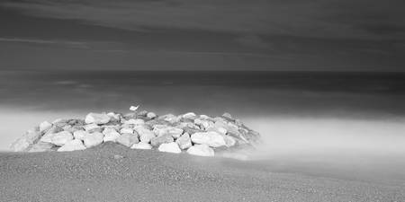 Beach at Nice in Black and White