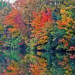 """""""Lake Wabukayne"""" by ROBERTSCOTTPHOTOGRAPHYY"""