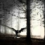 """""""My Sister Laurel as an Angel #7"""" by WJohnMorris"""