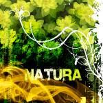 """Natura"" by carlosyanez"