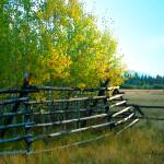 """Black Butte Ranch"" by nicoindo"