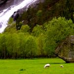 """vidfossen"" by martinheil"