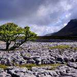 """The Yorkshire Dales - Ingleborough from White Scar"" by Dave_Lawrance_Photography"
