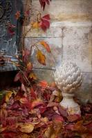 Fall In A French Courtyard