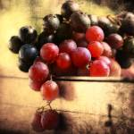 """Grapes of the Fall - Mono & Color"" by DragosDumitrascu"